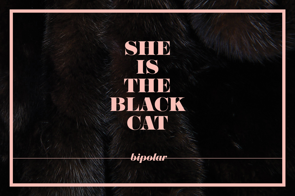 She is the black cat
